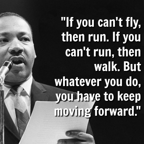 mlk-fly-walk-crawl